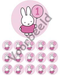 Eetbare Print + 15 Cupcake rondjes - 1 jaar - Roze