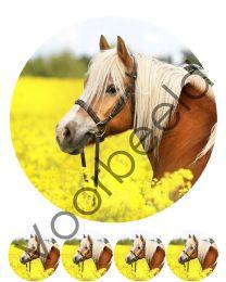 Eetbare Print Paarden 1 - 20 cm rond